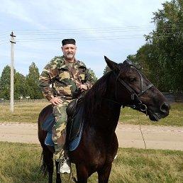 Андрей, 55 лет, Глазов