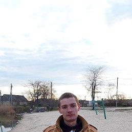 Сергей, 28 лет, Мелитополь