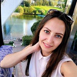 Куценко, 28 лет, Сыктывкар