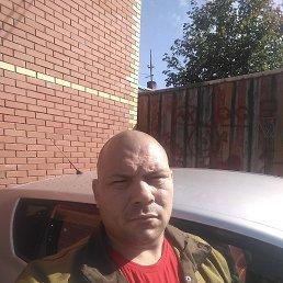 Максим, 37 лет, Томск