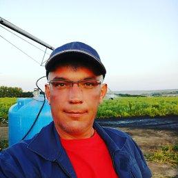 Сергей, 43 года, Плавск