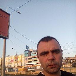 Роман, 36 лет, Винница