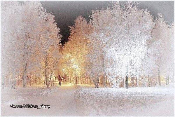 Сказочная зима!