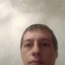 Сергей, 33 года, Вологда