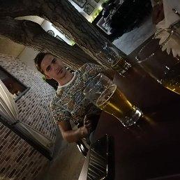 Дима, 25 лет, Светлоград