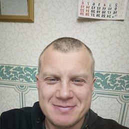 Андрей, 44 года, Альметьевск