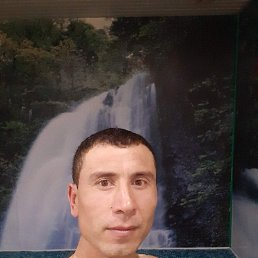 Дима, 38 лет, Курган
