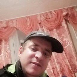 Андрей, 29 лет, Барнаул