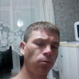 Владимир, 29 лет, Пермь