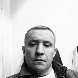 Дмитрий, 44 года, Санкт-Петербург