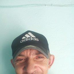 Алексей, 38 лет, Белогорск