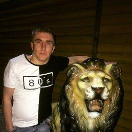 Игорь, Белгород, 29 лет