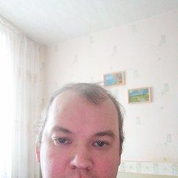 Рома, 41 год, Ижевск