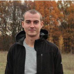 Леша, 27 лет, Ромны