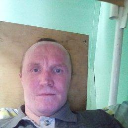 Николай, 38 лет, Киров