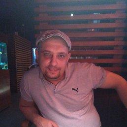 Андрей, 38 лет, Новочеркасск