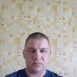 Александр, 37 лет, Весьегонск