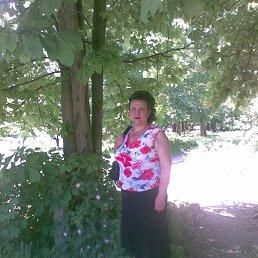 Галина, 64 года, Кировоград