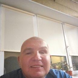 Сергей, 40 лет, Лесной