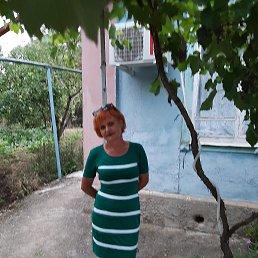 Елена, 43 года, Краснодар