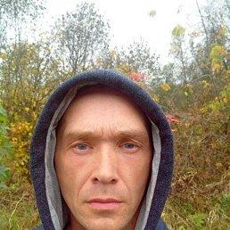 Игорь, 39 лет, Дедовск