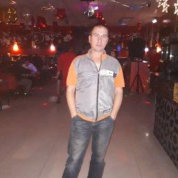 Олег, 44 года, Владивосток