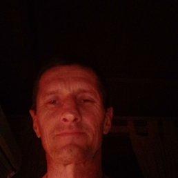Игор, 50 лет, Зарайск