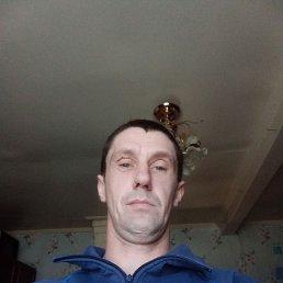 Серый, 34 года, Ефимовский