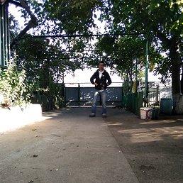 Сергей, 45 лет, Запорожье