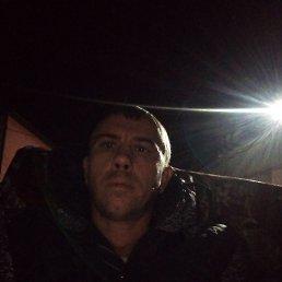 Брадяга, 36 лет, Домодедово