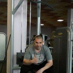 Роман, 38 лет, Сочи