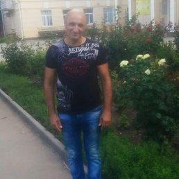 Серж, 52 года, Сальск