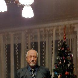 Геннадий, 65 лет, Белореченск