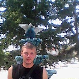 Денис, 26 лет, Новосибирск