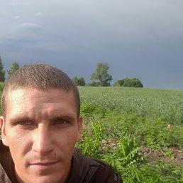 Диман, 31 год, Новосибирск