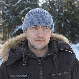 Игорь, 38 лет, Данилов