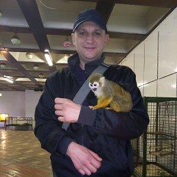 Виталик, 38 лет, Кубинка