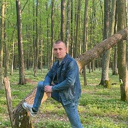 Сергй, 26 лет, Ровно