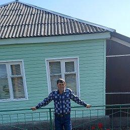 Андрей, 41 год, Кашары