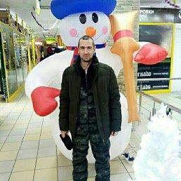 Андрей, 37 лет, Новосибирск