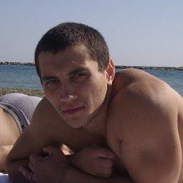 Владимир, 34 года, Королев