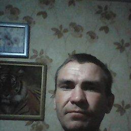 Олег, 33 года, Елань