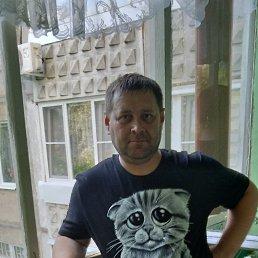 Алексей, 33 года, Сходня