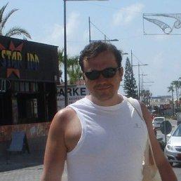 Митяй, 35 лет, Химки