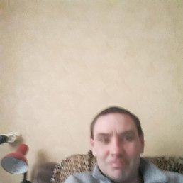 Сергей, 44 года, Рязань