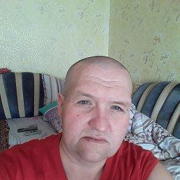 Роман, 44 года, Липецк