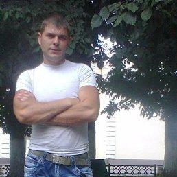 Гриня, 33 года, Звенигород