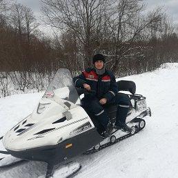 Шураков Дмитрий, 35 лет, Кострома
