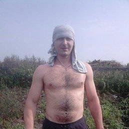 Сергей, 33 года, Димитровград