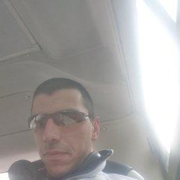 Максим, 33 года, Томск